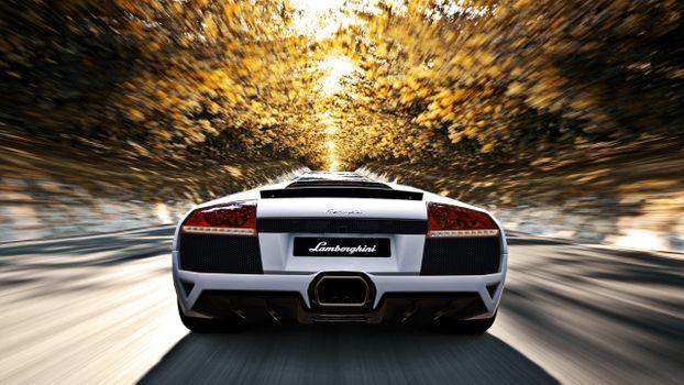 Photo free Lamborghini, Gran Turismo 5, back view