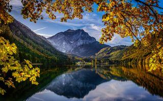 Заставки осенние деревья, осенние цвета, осень