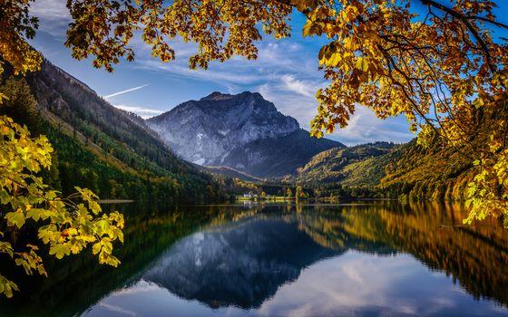 Фото бесплатно осенние деревья, осенние цвета, осень