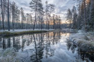 Заставки закат, Финляндия, заболоченная река