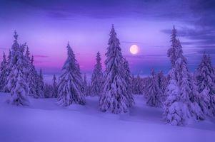 Фото бесплатно снег, Норвегия, Луна