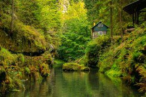 Фото бесплатно Edmunds gorge, поселение, густой лес