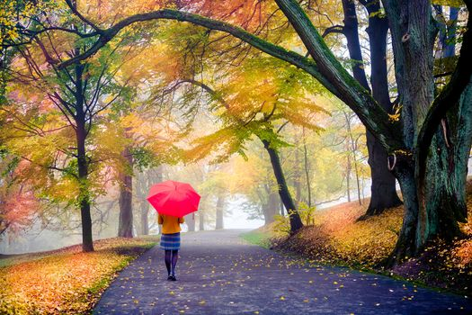 Фото бесплатно пейзаж, дорога, девушка с зонтом