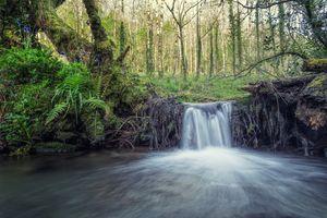 Фото бесплатно водопад, свежие, природа