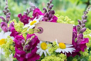 Фото бесплатно красочный, цветочная композиция, красивый букет