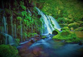 Заставки водопад, зелёный, лес