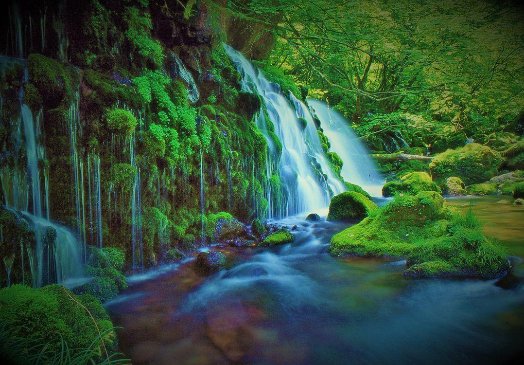 Фото бесплатно водопад, зелёный, лес - на рабочий стол