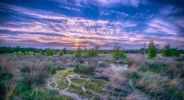 Фото бесплатно закат, болото, небо