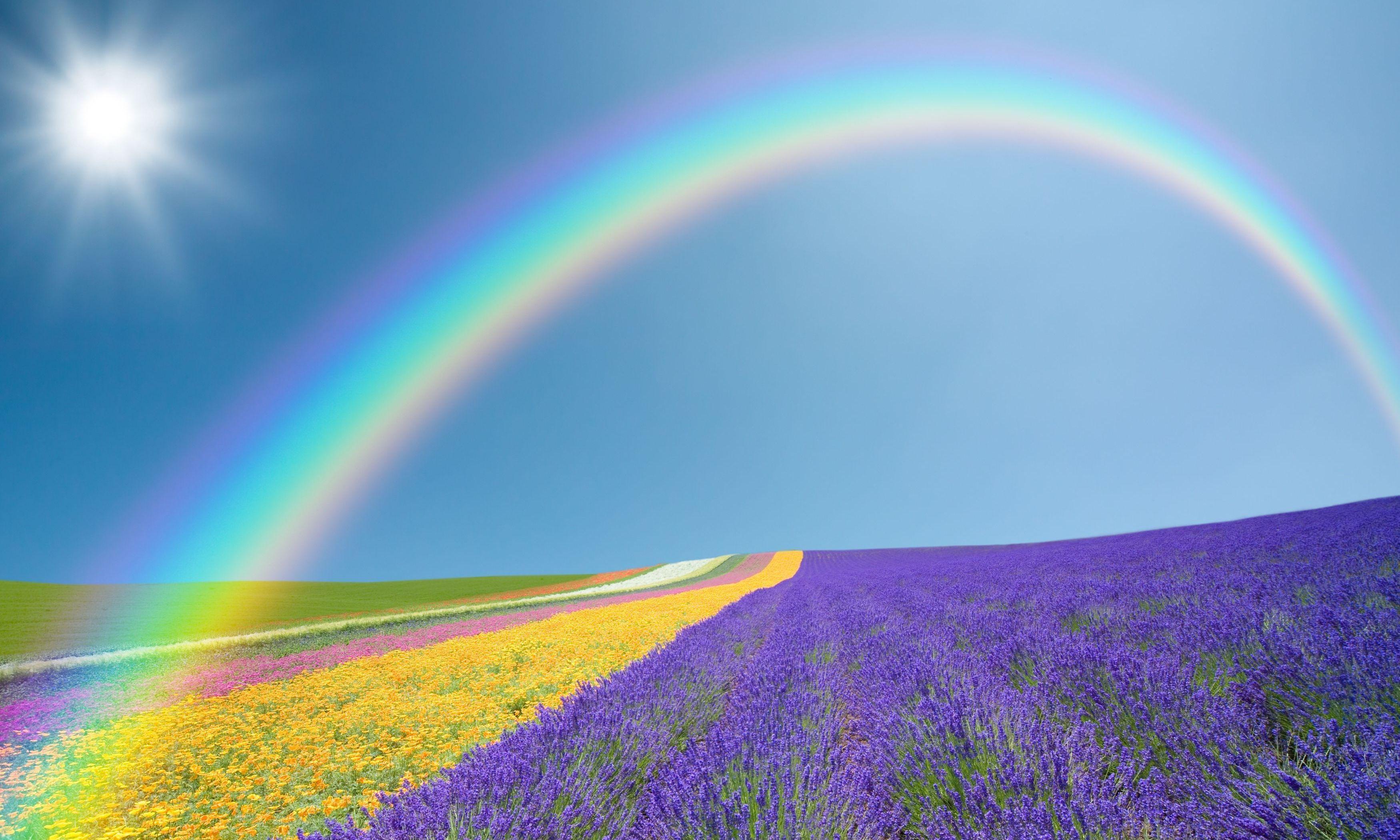 картинки с яркой радугой классных фотоэкспериментов над