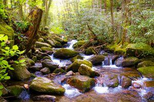 Заставки ток, река, природа