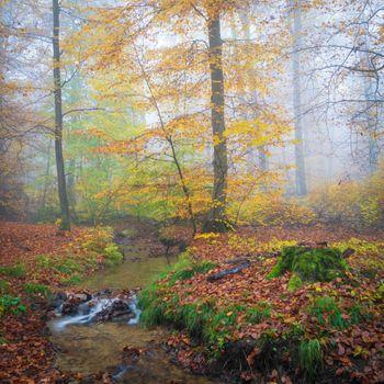 Photo free beauty, waterfall, stream