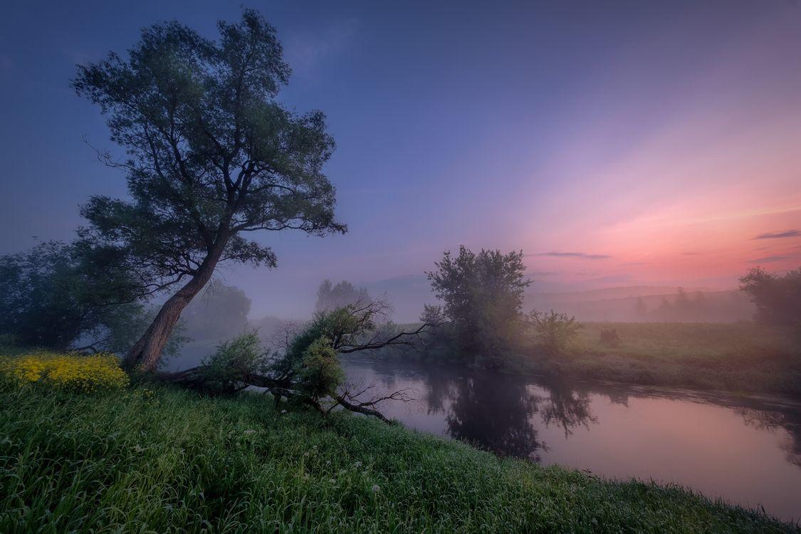 Фото бесплатно Рассвет на Истре, Россия, река - на рабочий стол