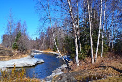 Заставки природа, весна, речка