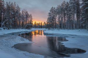 Заставки Kansallispuisto, Коли, Финляндия