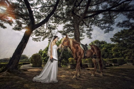 Photo free wedding dress, bride, horse