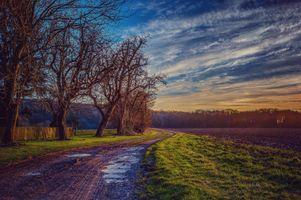 Бесплатные фото закат,поле,дорога,пашня,небо,деревья,пейзаж