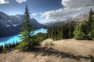 Фото бесплатно Peyto Lake, Banff National Park, Canada