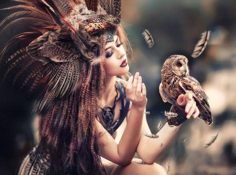 Фото бесплатно красота, сова, стиль