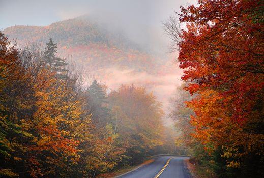 Заставки дорога, туман, пейзаж
