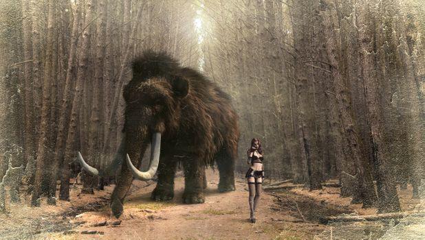 Заставки фантазия, мамонт, женщина