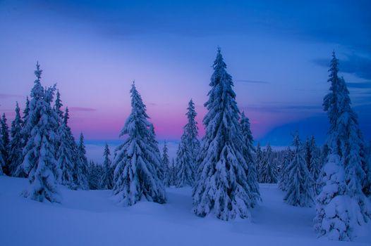 Photo free Norway, winter, snow