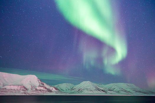 Photo free nature, snow, night