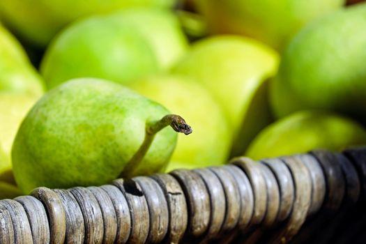 Фото бесплатно груши, зеленые, свежие