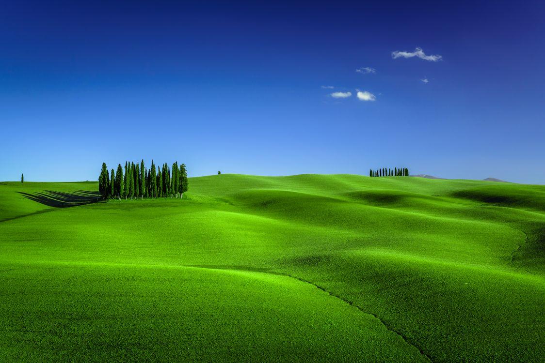 Фото бесплатно Tuscany, Италия, трава - на рабочий стол