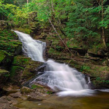 Фото бесплатно White Mountain National Forest водопад, лес, скалы, деревья, природа