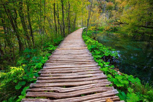 Обои Плитвицкие озера,Хорватия,деревья,дорожки,пейзаж