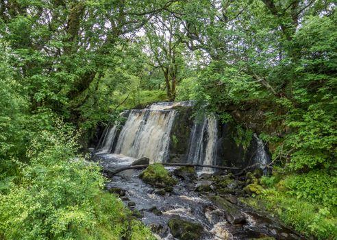 Photo free flowing, landscape, river