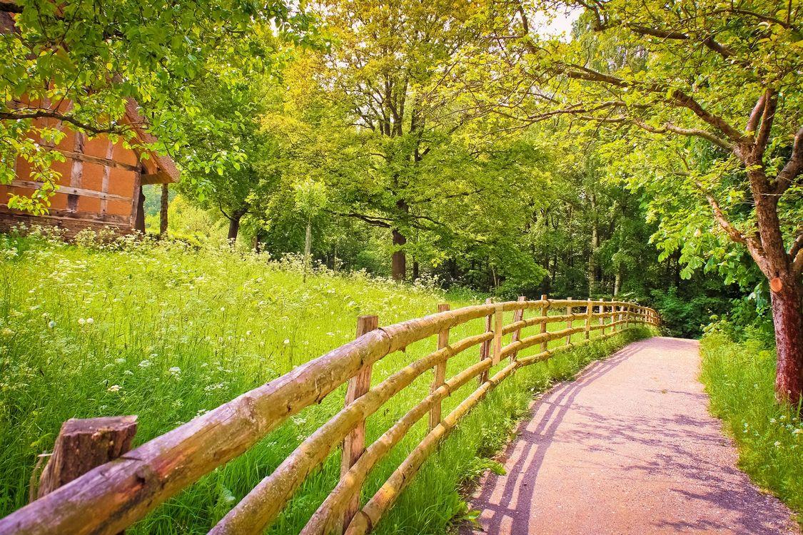 Фото бесплатно забор, трава, зеленый, дом, природа, дорога, тень - на рабочий стол