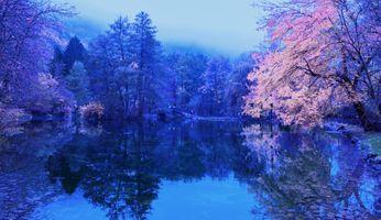 Бесплатные фото пруд,парк,водоём,деревья,осень,рассвет,мост