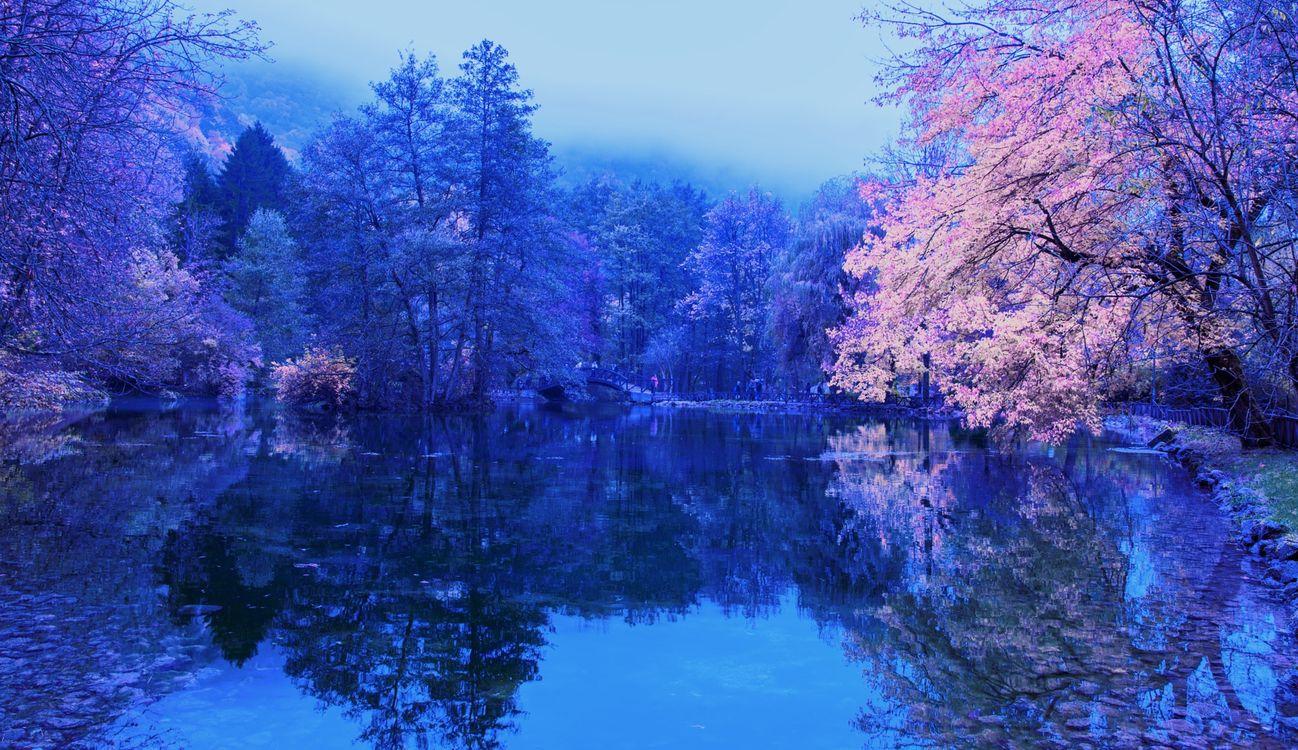 Фото бесплатно пруд, парк, водоём, деревья, осень, рассвет, мост, пейзаж, Босния, Герцеговина, пейзажи