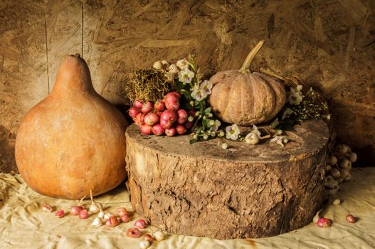 Still life with pumpkins · free photo
