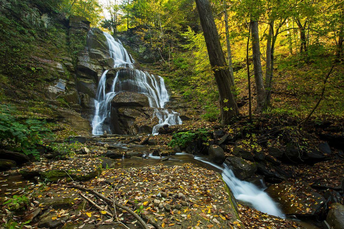 Фото бесплатно природа поток, скалы, лес - на рабочий стол