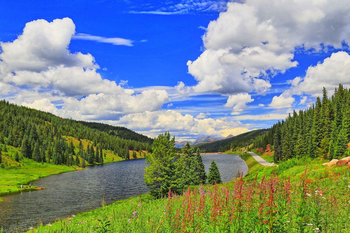 Фото бесплатно река, озеро, дорога, горы, холмы, деревья, небо, облака, природа, цветы, пейзаж, пейзажи
