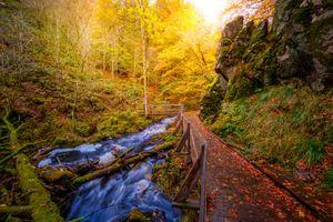 Заставки Швеция, осень, река