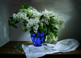 Beautiful wallpapers vase, flowers on the phone