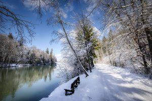 Бесплатные фото зима,дорога,река,лес,деревья,природа,лавочка