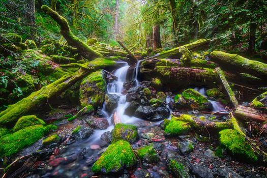Бесплатные фото Copper Creek in Washington State near Lake Cushman,Коппер-Крик,штат Вашингтон,возле озера Кушман,водопад,река,лес,речка,ручей,камни,мох,течение