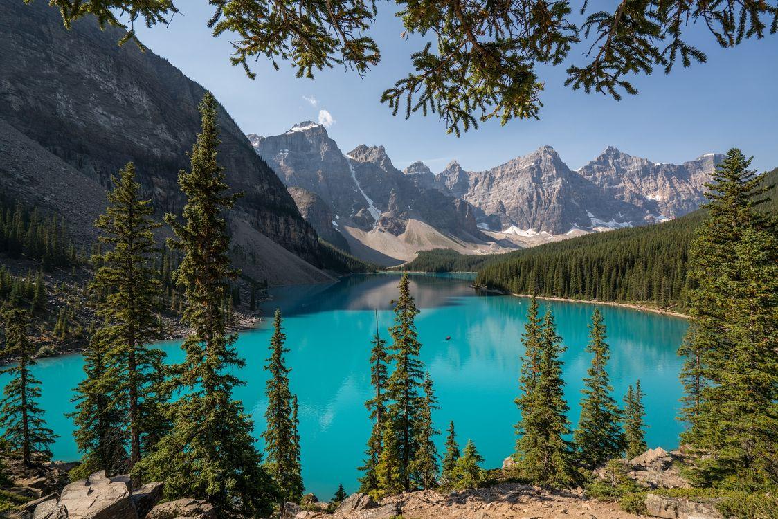 Фото бесплатно Озеро Морейн, деревья, Альберта - на рабочий стол