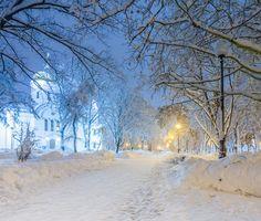 Бесплатные фото зима,парк,снег,сугробы,церковь,ночь,свет