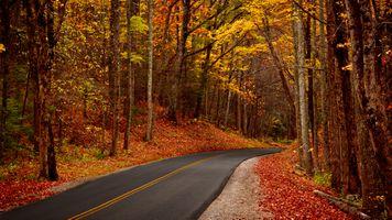Заставки Большие дымные горы, осень, дорога