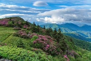 Photo free Roan highlands, grassy ridge, Western North Carolina