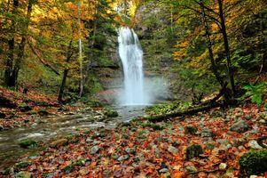 Заставки осень, лес, природа