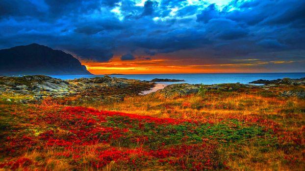 Фото бесплатно облака, цветы, HDR
