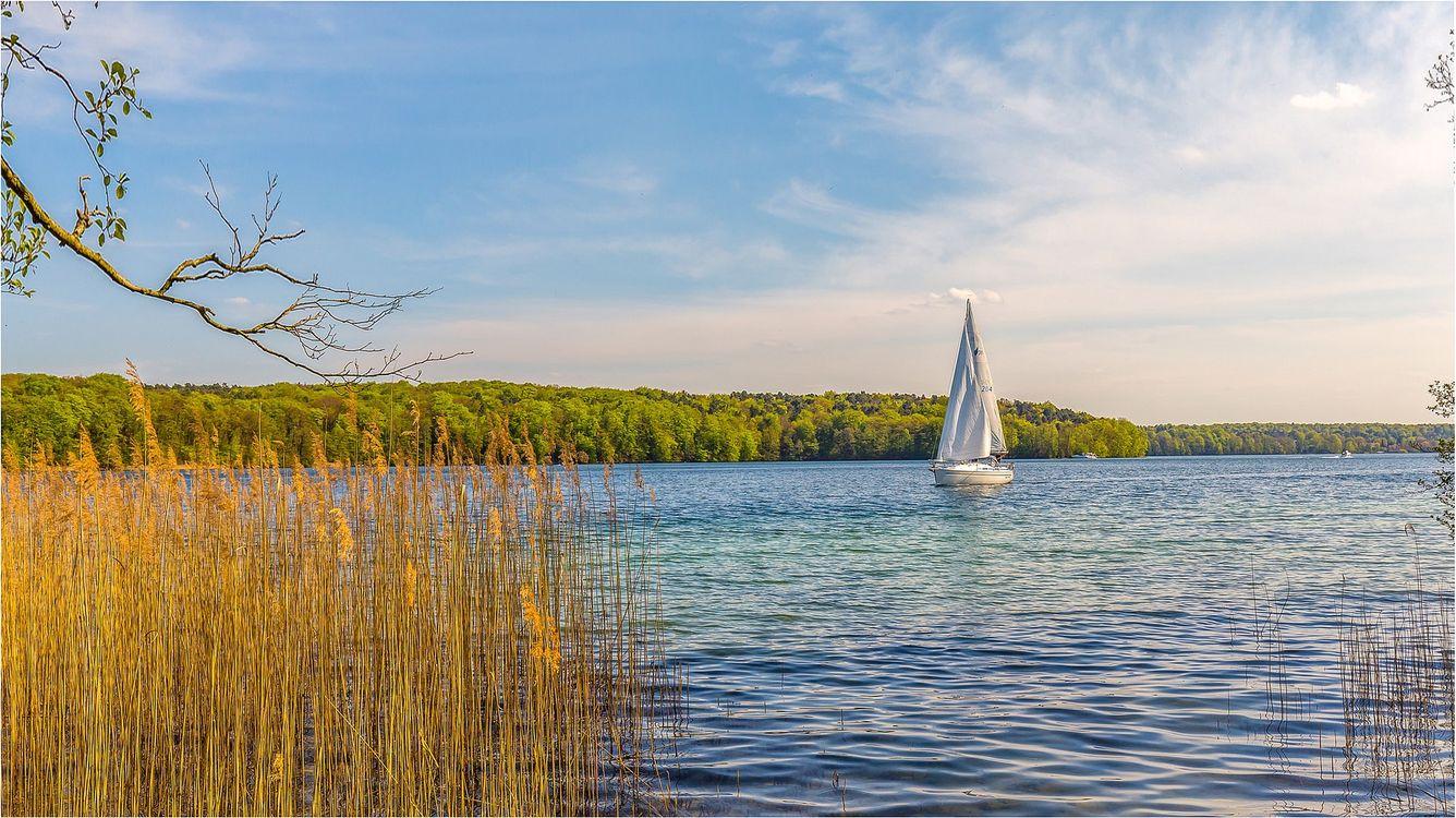 Фото бесплатно озеро, парусник, лодка, волны, лес, растения, пейзаж, пейзажи - скачать на рабочий стол