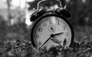 Фото бесплатно часы, трава, время