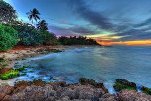 Фото бесплатно мох, океан, пляж